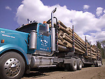 Loaded logging truck, Kootenay Mountains, British Columbia