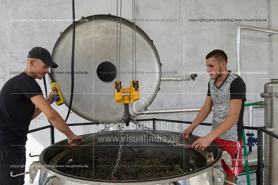 ALBANIA, Shkodra, farming of herbal and medical plants, essential oil distillery of Agro-Map/ ALBANIEN, Shkoder, Anbau von Heil- und Gewuerzpflanzen, Kraeuteroel Destille der Firma Agro-Map