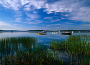 Sailboats in Lake Massabesic in Auburn, New Hampshire at sunrise. Located in Manchester and Auburn, this lake covers over 2,500 acres, and it is the drinking water supply for the Manchester area.
