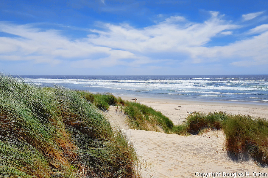 Footprints cover dunes in dramatic seascape of Pacific Ocean beach at Nehalem Bay State Park, Oregon State Parks.