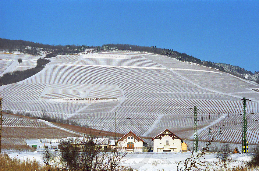 The Tokaj mountain with vineyards on the steep slopes at the Tarcal village. The Hetszolo vineyard with the name painted on a wall. Hetsz?l? Credit Per Karlsson BKWine.com