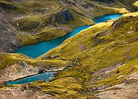 Alpine tarns, Nelson Lakes National Park, South Island, New Zealand, NZ