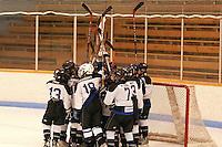 Badger State Winter Games '08 - Peewee Hockey - PCYOI vs Chippewa Falls
