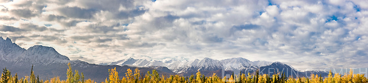 Chugach Mountains East of Anchorage seen from the north with fall foliage in the foreground, Palmer, Southcentral Alaska, USA.