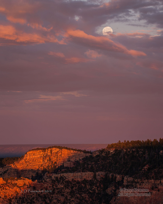 Supermoon Rising above South Rim, Grand Canyon