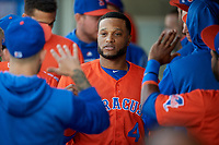 New York Mets Robinson Cano (4), on rehab assignment with the Syracuse Mets, high fives teammates after scoring a run during a game against the Charlotte Knights on June 11, 2019 at NBT Bank Stadium in Syracuse, New York.  (Mike Janes/Four Seam Images)