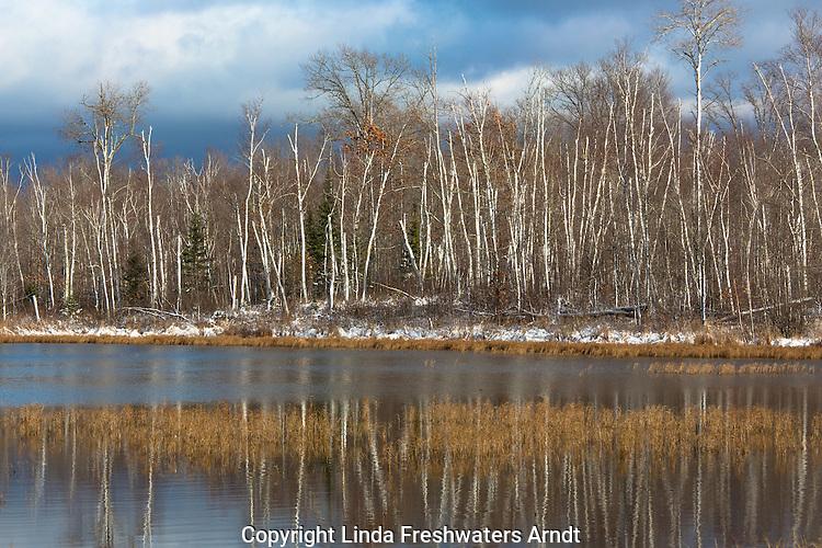 Wilderness lake in northern Wisconsin