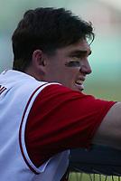 Tim Salmon of the Anaheim Angels during a 2003 season MLB game at Angel Stadium in Anaheim, California. (Larry Goren/Four Seam Images)