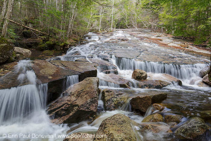 Cascade on Whitehouse Brook in Franconia Notch of Lincoln, New Hampshire on a spring day.