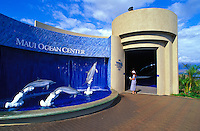 A visitor views a dolphin display outside Maui Ocean Center in Maalaea town.