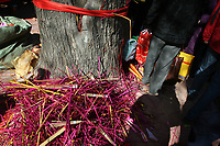 CHINA. Discarded incense sticks during Chinese New Year in Baiyun Temple in Beijing.  Chinese New Year, or Spring Festival, is the most important festival and holiday in the Chinese calendar In mainland China, many people use this holiday to visit family and friends and also visit local temples to offer prayers to their ancestors. The roots of Chinese New Year lie in combined influences from Buddhism, Taoism, Confucianism, and folk religions.  2008