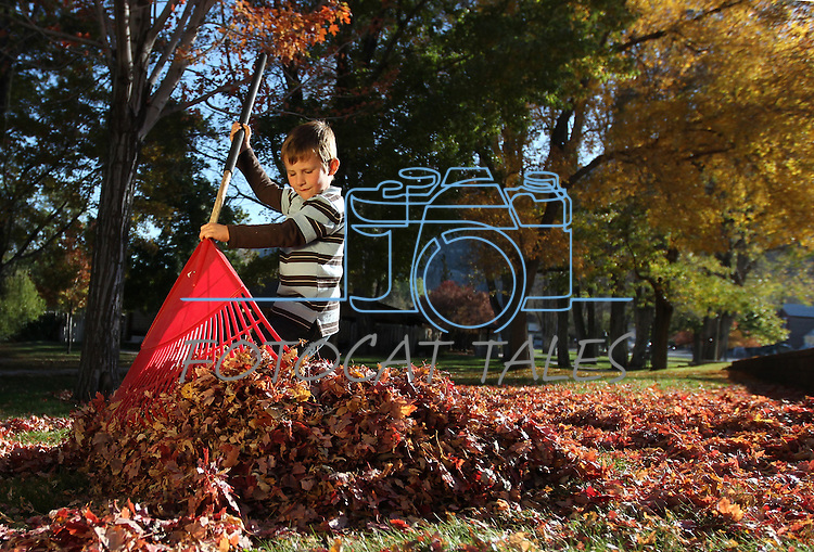 Playing in the leaves in Genoa, Nev., on Thursday, Oct. 27, 2011..Photo by Cathleen Allison