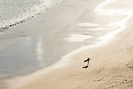 A surfer walks along the beach in Sagres, Portugal. Portugal is one of the hot spots for surfers in Europe.