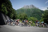 yellow jersey / GC leader Adam Yates (GBR/Mitchelton-Scott) descending in the bunch<br /> <br /> Stage 6: Saint-Vulbas to Saint-Michel-de-Maurienne (228km)<br /> 71st Critérium du Dauphiné 2019 (2.UWT)<br /> <br /> ©kramon