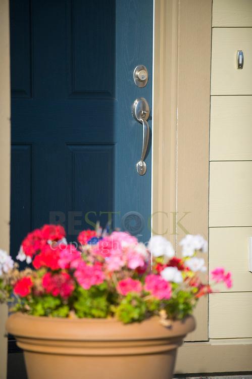 Blue Front Door with Flowers