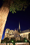 The night view of Notre Dame Notre-Dame cathedral from Left Bank. city of Paris. Paris. France