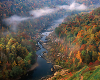 Foggy sunrise light on the Big South Fork of the Cumberland River viewed from Devil's Jump; Big South Fork National River & Recreation Area, KY