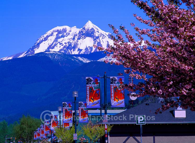 Squamish, BC, British Columbia, Canada - Mount Garibaldi (elev 2675 m) in Garibaldi Provincial Park, City Street Banners, Spring - Outdoor Recreation Capital of Canada