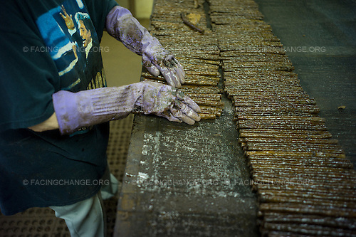Scranton, Pennsylvania.July 30, 2012..The Parodi Avanti Cigar Factory, which currently employs 28 workers, down from 70...Photograph by Alan Chin.