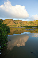 Francis Bay Pond<br /> Virgin Islands National Park<br /> St. John<br /> U.S. Virgin Islands