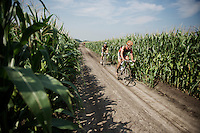 the infamous cornfield section<br /> <br /> 90th Schaal Sels 2015