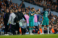 Moussa Sissoko of Tottenham Hotspur is substituted for Fernando Llorente of Tottenham Hotspur during the UEFA Champions League Quarter Final second leg match between Manchester City and Tottenham Hotspur at the Etihad Stadium on April 17th 2019 in Manchester, England. (Photo by Daniel Chesterton/phcimages.com)<br /> Foto PHC/Insidefoto <br /> ITALY ONLY