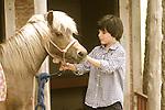 Havens Horses Zane