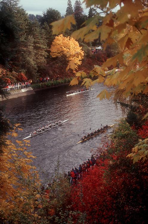 Rowing, Seattle; Head of the Lake Regatta, autumn, Washington State; Pacific Northwest;