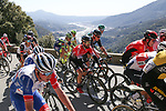 The peloton including Nacer Bouhanni (FRA) Team Arkea-Samsic climb the Côte de Gilette during Stage 7 of Paris-Nice 2021, running 119.2km from Le Broc to Valdeblore La Colmiane, France. 13th March 2021.<br /> Picture: ASO/Fabien Boukla | Cyclefile<br /> <br /> All photos usage must carry mandatory copyright credit (© Cyclefile | ASO/Fabien Boukla)