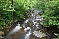 River near The Priest Mountain in Nelson County, Virginia. Photo/Andrew Shurtleff