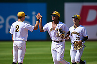 Bradenton Marauders outfielders Sergio Campana (13)  and Sammy Siani (25) high five Jase Bowen (2) after a game against the Palm Beach Cardinals on May 30, 2021 at LECOM Park in Bradenton, Florida.  (Mike Janes/Four Seam Images)