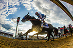MAY 15, 2021: Medina Spirit and John Velazquez leads the field for the Preakness Stakes at Pimlico Racecourse in Baltimore, Maryland on May 15, 2021. EversEclipse Sportswire/CSM