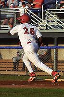 New York-Penn League 2001