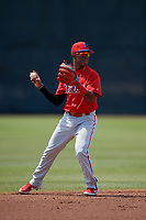 Philadelphia Phillies Luis Garcia (5) during a Minor League Spring Training game against the Toronto Blue Jays on March 29, 2019 at the Carpenter Complex in Clearwater, Florida.  (Mike Janes/Four Seam Images)