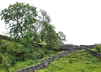 Views of the Yorkshire Dales National Park, North Yorkshire on August 7th and 9th 2020<br /> <br /> Photo by Keith Mayhew