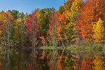 Autumn on a wilderness lake in northern Wisconsin.