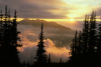 Sunset over Klahhane Ridge from Deer Park area, Olympic National Park, WA.  Summer. Fog or low lyilng stratus clouds with higher altostratus clouds above.