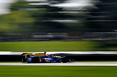Verizon IndyCar Series<br /> IndyCar Grand Prix<br /> Indianapolis Motor Speedway, Indianapolis, IN USA<br /> Saturday 13 May 2017<br /> Alexander Rossi, Andretti Herta Autosport with Curb-Agajanian Honda<br /> World Copyright: Scott R LePage<br /> LAT Images<br /> ref: Digital Image lepage-170513-indy-4132