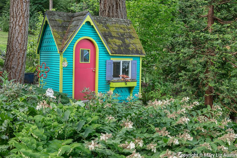Vashon-Maury Island, WA: Colorful playhouse in woodland perennial garden