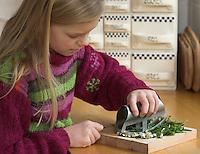 Mädchen, Kind schneidet Kräuter, Kräuter-Pfannkuchen mit Löwenzahn - Blättern und Gänseblümchen - Blüten, Zutaten werden zerkleinert, Taraxacum, Bellis perennis