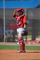 Boston Red Sox catcher Isaias Lucena (36) during a Minor League Spring Training game against the Tampa Bay Rays on March 25, 2019 at the Charlotte County Sports Complex in Port Charlotte, Florida.  (Mike Janes/Four Seam Images)