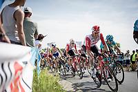 Belgian National Road Championships 2019 - Gent<br /> <br /> ©kramon