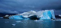 Iceberg,Alsek Lake