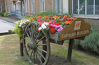 Summer flower display to celebrate the Golden Jubilee of Her Majesty, Queen Elizabeth II, in Farnham, Surrey.