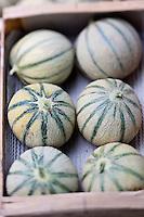 Europe/France/Midi-Pyrénées/32/Gers/Lectoure: Melon de Lectoure sur le marché