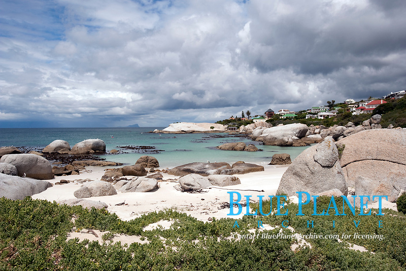 Boulder Beach, Cape Town, South Africa, southern Africa
