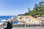 Rocky viewpoint overlooking the Pacific Ocean from Cape Arago on the central coast of the state of Oregon, USA.