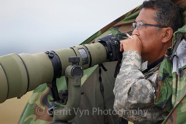 Korean bird photographer on Yubu Island, South Korea.