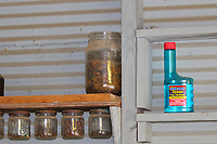 There is a prothonotary warbler nest with four babies inside this fruit jar (we took the jar down for a quick look before putting it back) located on a shelf inside a boathouse on a small lake. The owner found the nest when he saw an adult bird fly to it. Who would have thought a warbler would nest in a fruit jar? The photos which follow show an adult coming to feed the babies which are well feathered at this time.