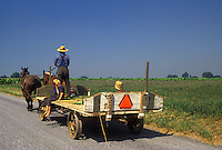 AJ3022, amish, wagon, farmer, Amish country, Lancaster County, Pennsylvania, Pennsylvania Dutch Country, Amish farmer drives his team of horses pulling a wagon with children down a country road in Lancaster in the state of Pennsylvania.